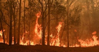 INCENDIES-AUSTRALIE-france-info