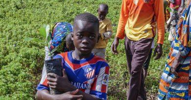 un enfant avec un plant d'arbre à Finkolo Ganadougou, Sikasso