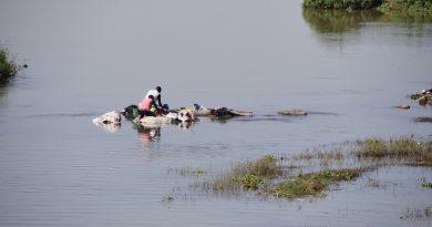Pollution Fleuve Niger